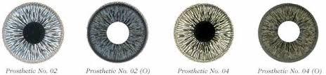 PROSTHETIC-LENS-3.jpg